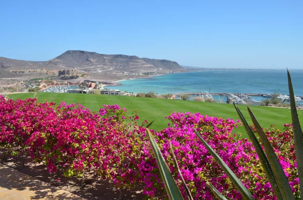 View of the marina at the CostaBaja resort.
