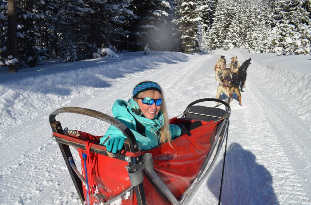 trail of dreams dogsledding