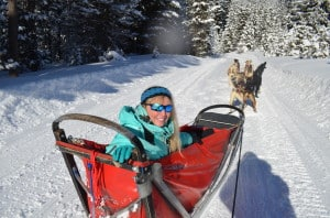 Dogsledding_Patti_Morrow