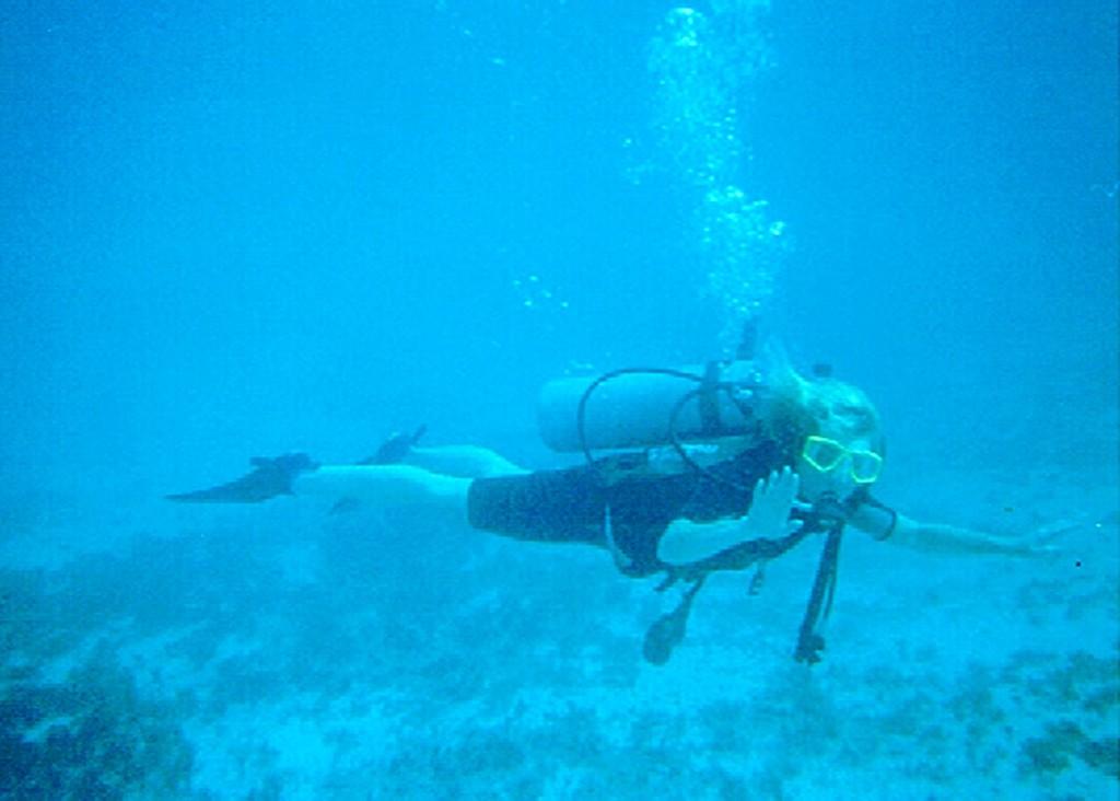 Belize Diving LLL-rev1