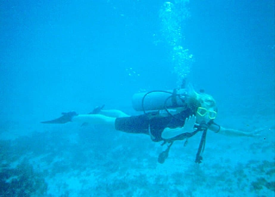 belize diving