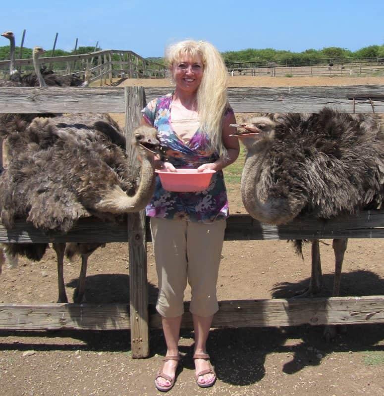 curacao ostrich farm tour