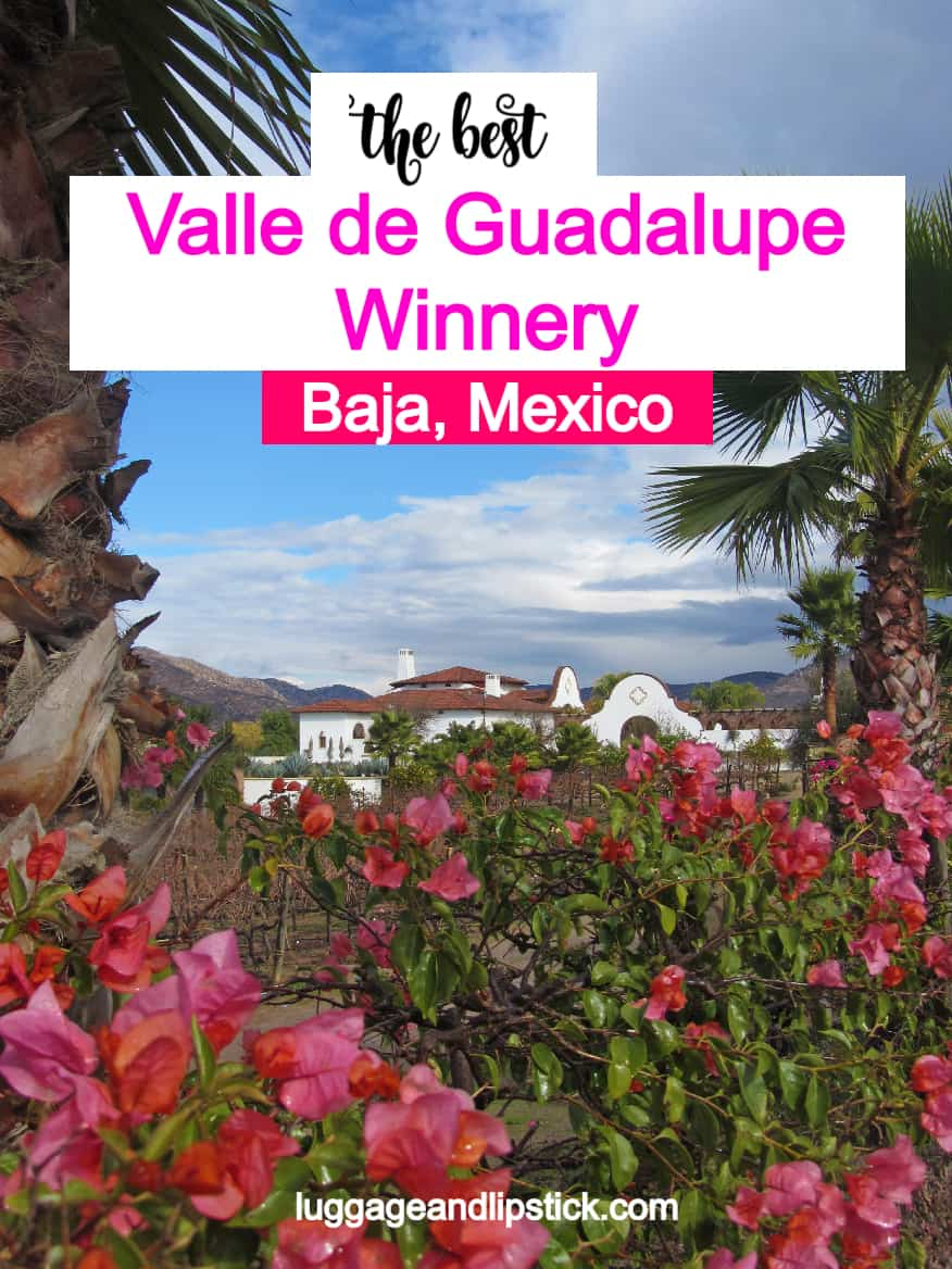 valle de guadalupe winneries