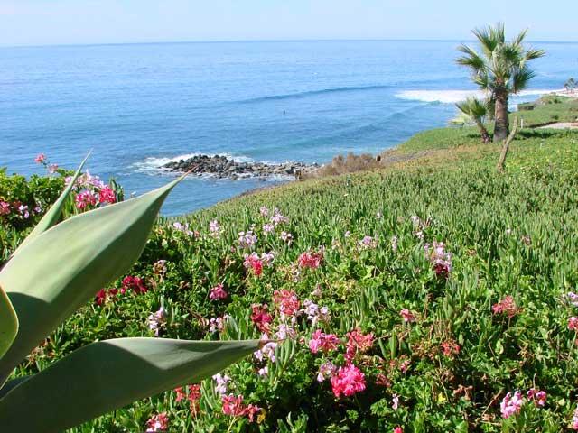 rosarito spring break