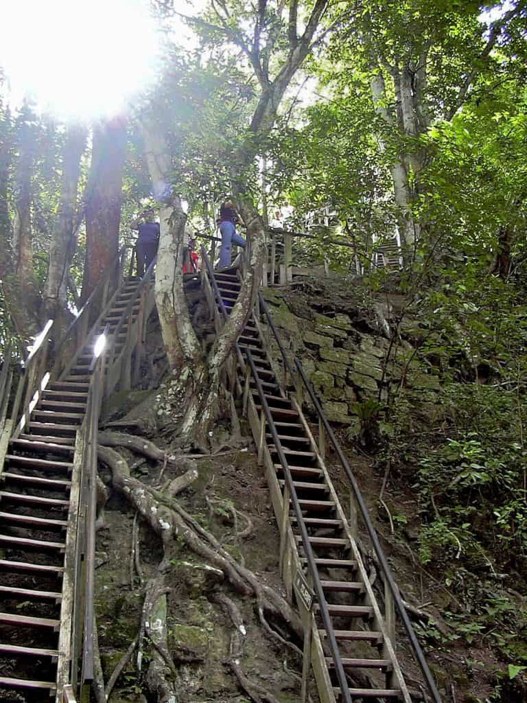 Ladders, stone steps and roots to climb Temple I, Tikal