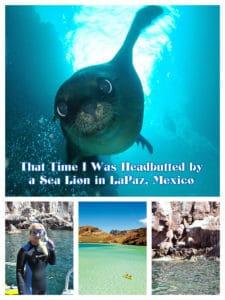 LaPaz, mexico