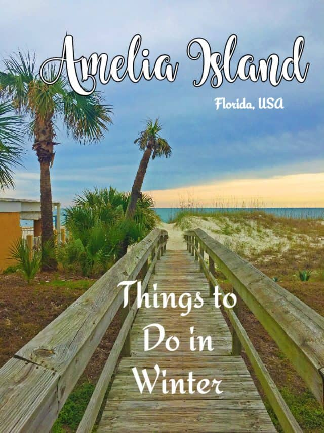 Things to Do in Amelia Island in Winter