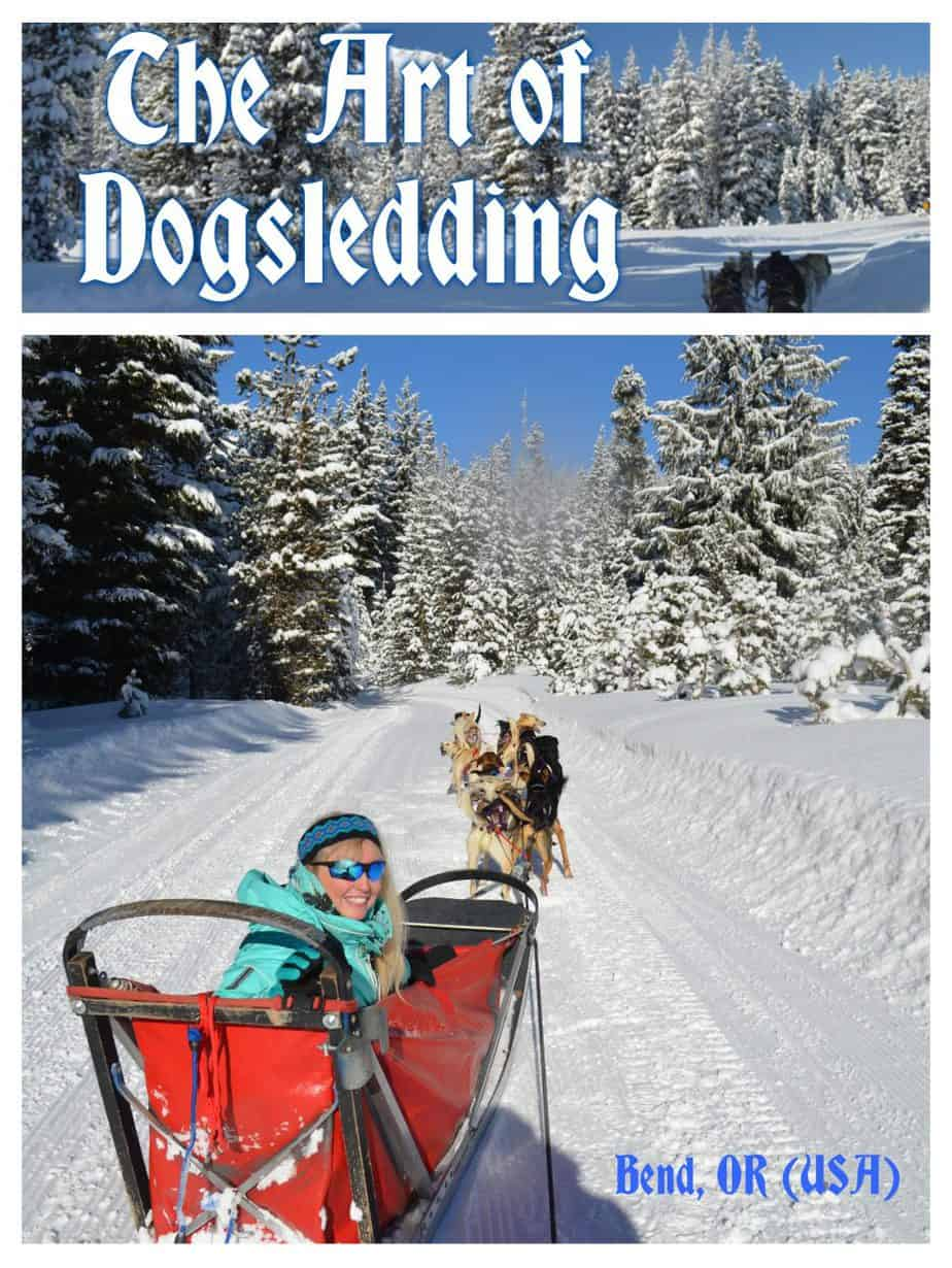 dog sledding oregon