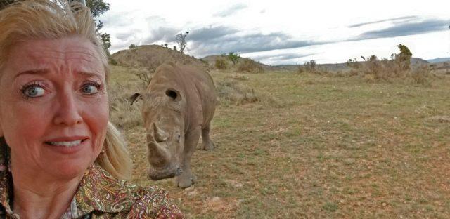 rhino at lewa
