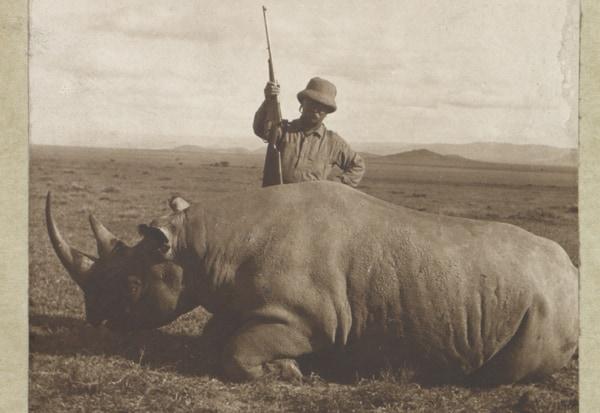 poaching in kenya