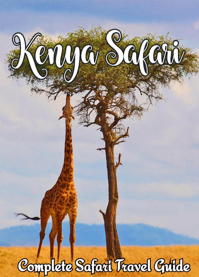 Kenya Safari Holidays: Complete Safari Guide
