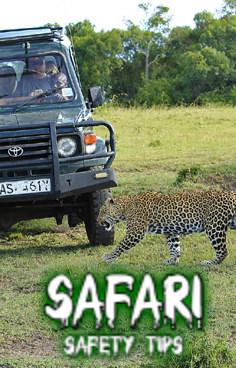 safari safety