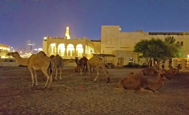 doha city tour